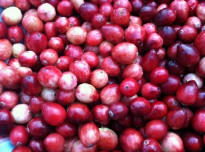 Wild Cranberries fresh picked from the bog