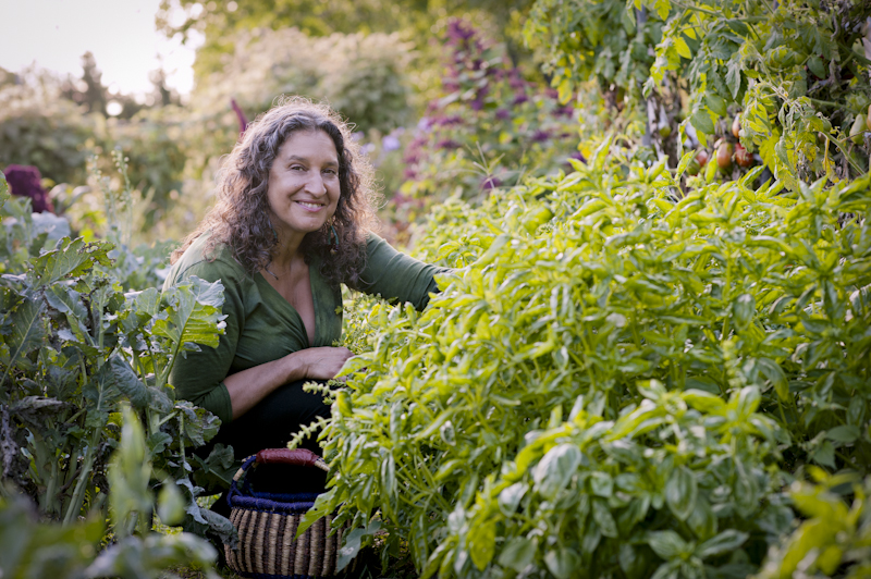 Leslie Cerier picking organic basil and organic greens