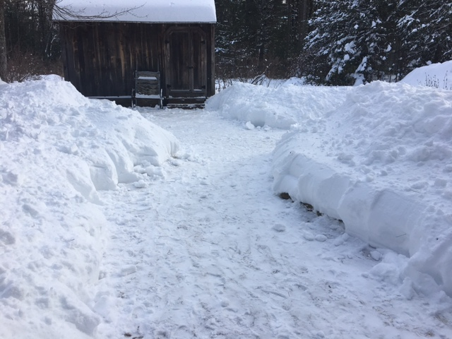 Shoveling to the shed took about an hour