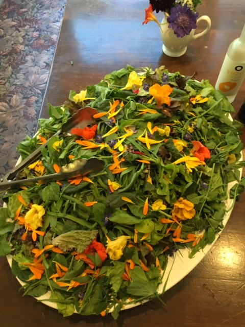 Organic edible flowers on salad