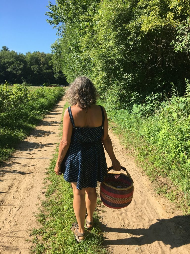 Walking to the back fields with basket in hand at the Brookfield Farms
