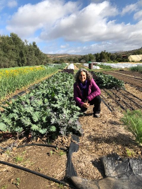 Teaching Hands on organic farm to table vegetaria cooking At Rancho La Puerta in Mexico. Here is Leslie Cerier, The Organic Gourmet in the organic garden