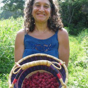 Picking Raspberries at the Brookfield Farm