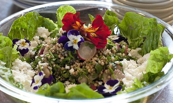 Organic, gluten-free, Vegetarian Sorghum Salad