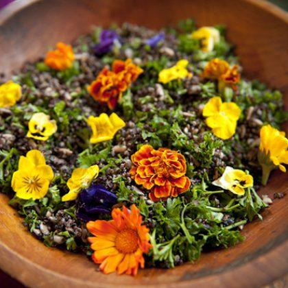 Organic Quinoa Salads and Miso Dressings