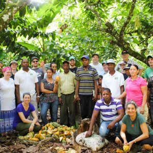 Hot, Happy and Grateful in the DR harvesting cacao