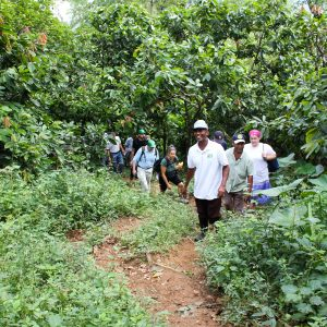 Dominican Republic, hiking with Equal Exchange and the cacao farmers of the Dominican Republic
