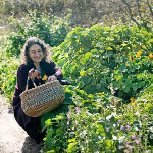 Leslie Cerier picking organic nasturtiums in the Esalen organic Garden