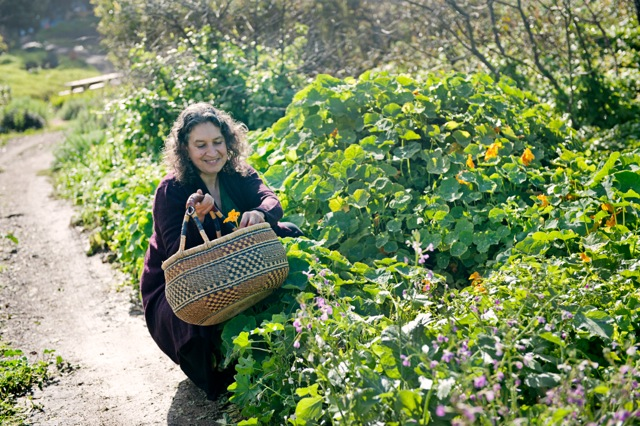 Leslie Cerier picking organic nasturtiums in the Esalen organic Garden