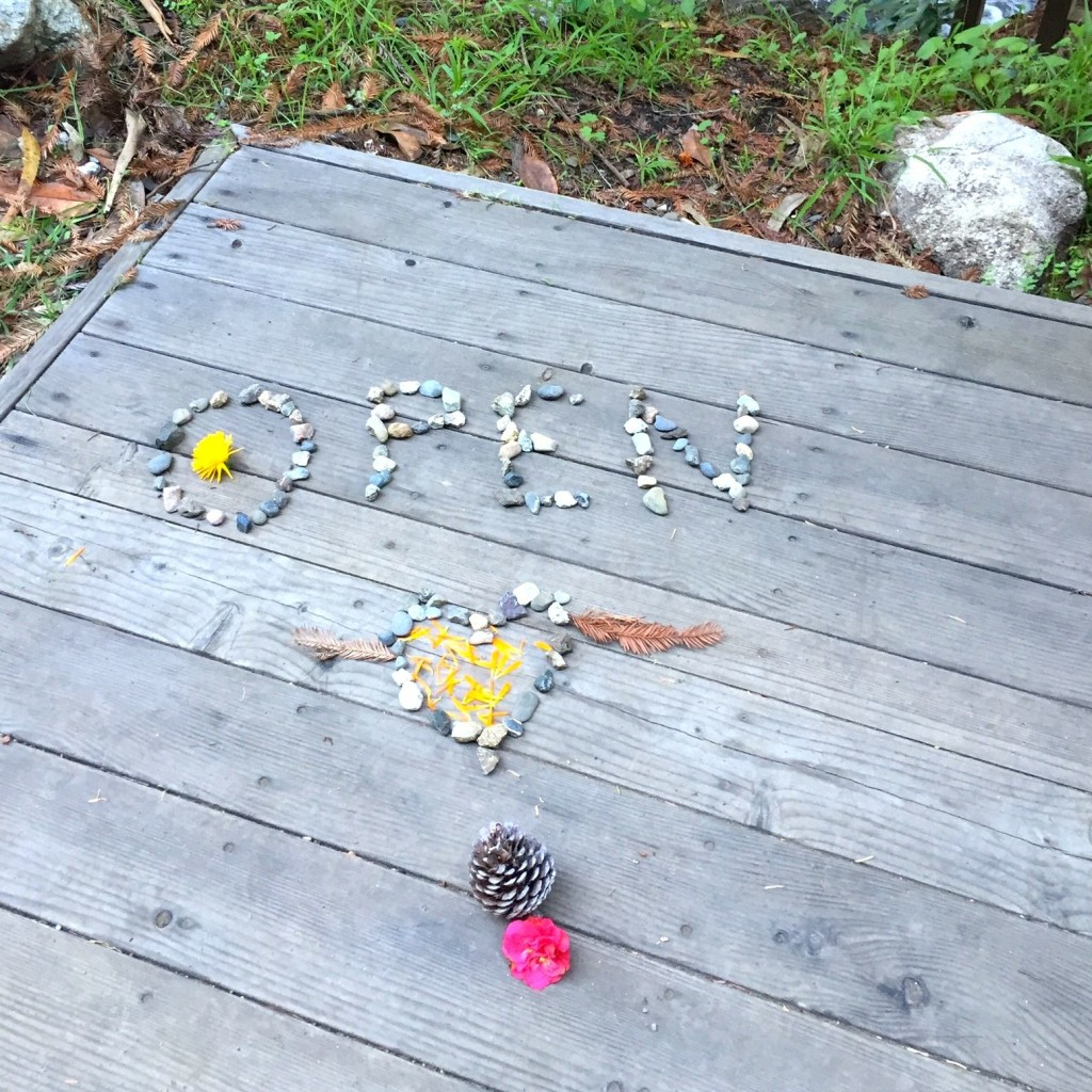 Love, art from Esalen bridge