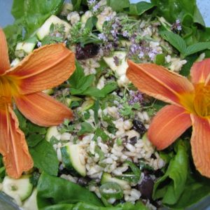 Organic, Vegan, Salad with Day Lillies