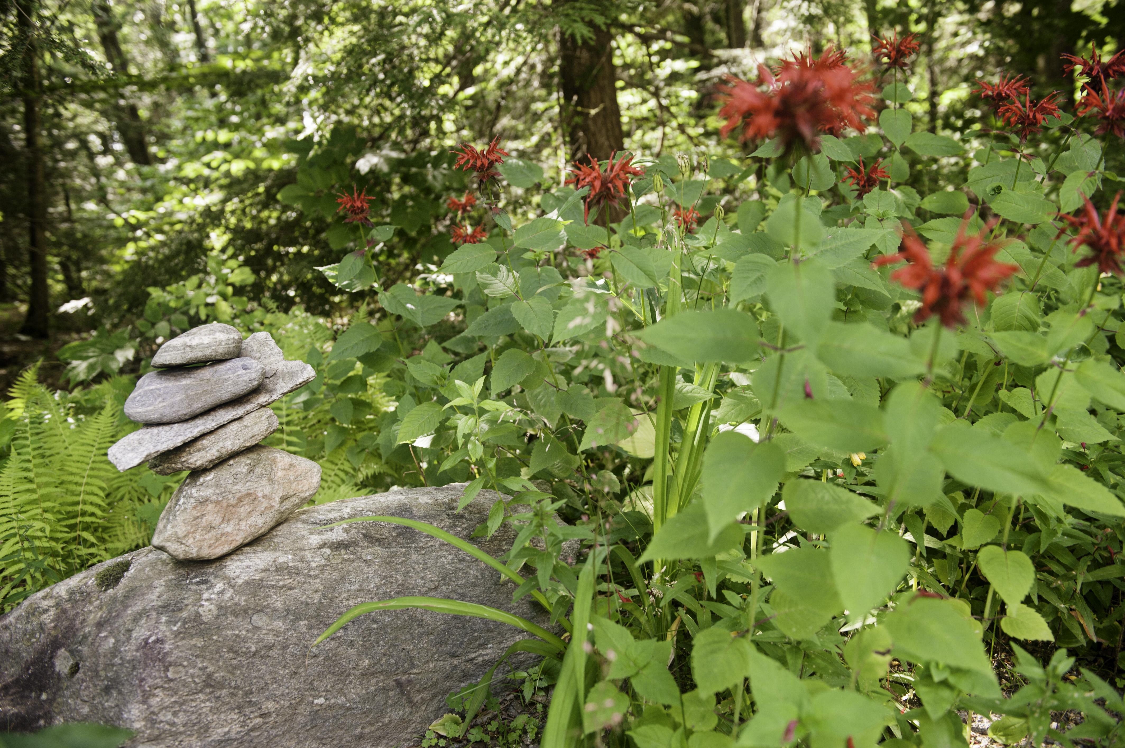 Rock sculpture, organic lifestyle retreat