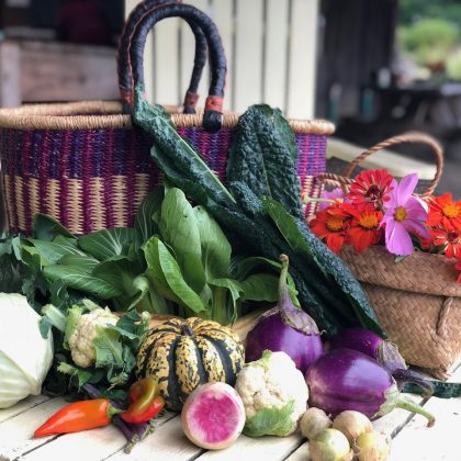 Creative Vegetarian Cooking with Our Local Organic Harvest