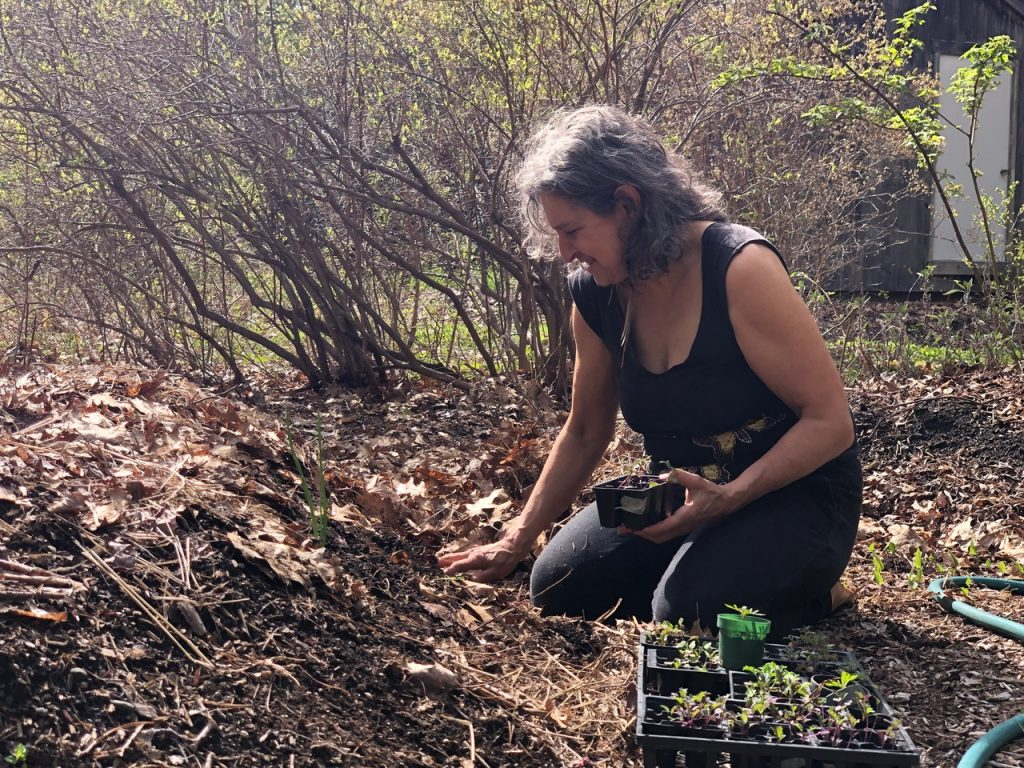 Leslie Cerier planting in her organic gardens
